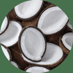 Noix de coco laiteuse